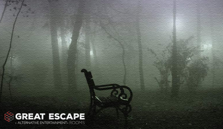 Καρέκλα σε δάσος