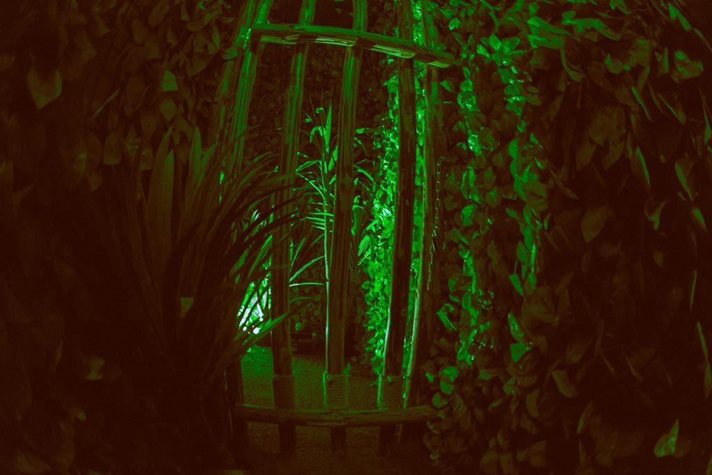 Ξύλινα κάγκελα και φυτά στο The Survivor Escape Room Θεσσαλονίκη