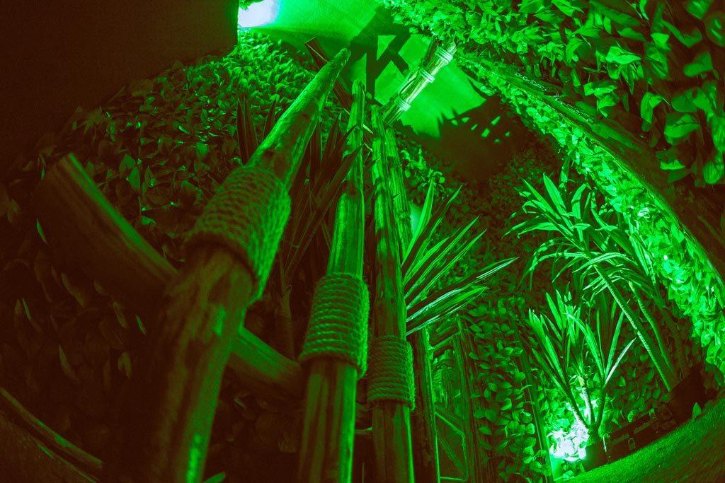 Φυτά με πράσινο φωτισμό στο The Survivor Escape Room Thessaloniki