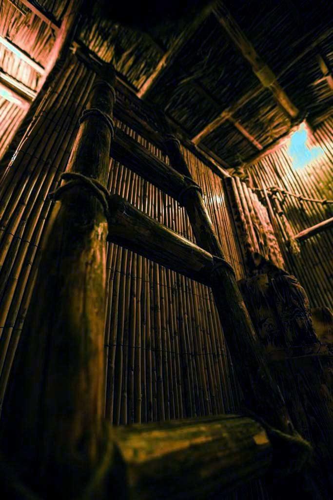 The Survivor Escape Room